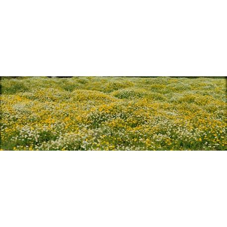 Blütenkissen, Markus Bollen