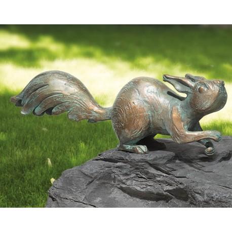 Eichhörnchen auf der Hut